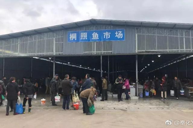 春节将至 可以去奉化桐照码头挑选海鲜