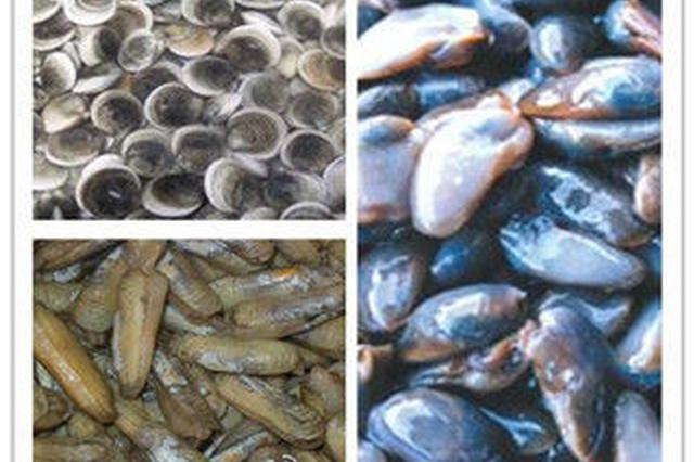 过年必备的宁海八鲜过海 不少食客为其奔走