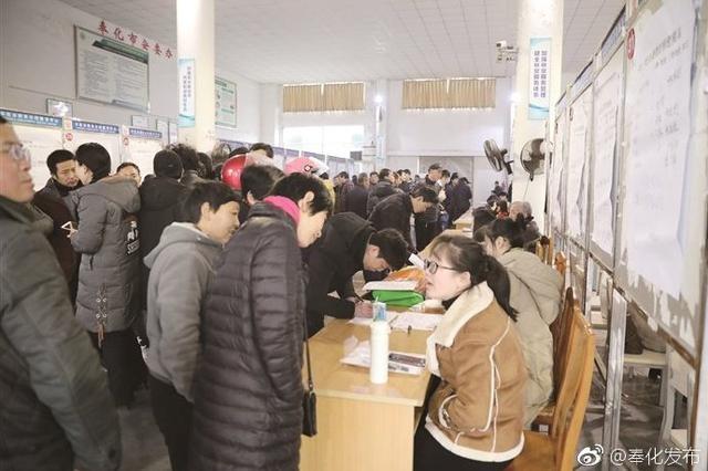 奉化节后首场人才集市开市 共166家民企在此招贤纳士