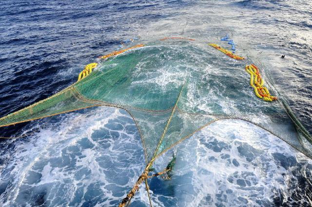 全国首艘 象山远洋企业投6.5亿元造船淘金南极