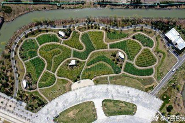 春暖花开宁波植物园好美 迎来游客驻足欣赏