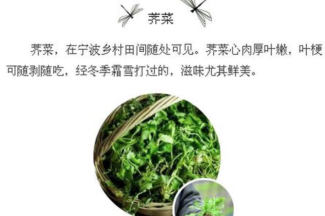 宁波人在春天必吃的野菜 一起去尝尝吧