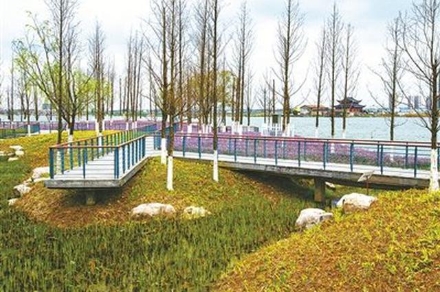 宁波首个海绵城市公园景致宜人 五彩斑斓的双古渡公园