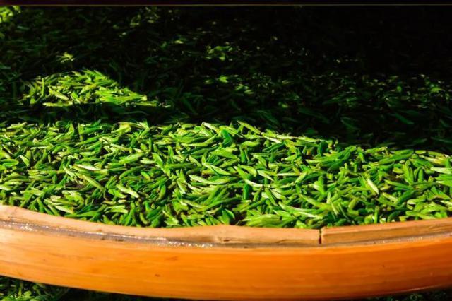 北仑白峰的采茶人采白峰春茶 为制成那一口甘香