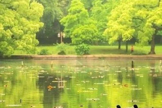 杭州未到梅雨季却持续闷热 五一假期少不了风和雨