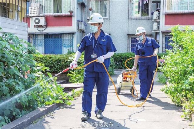 宁波月湖街道组织灭蚊人员 做好日常防蚊灭蚊工作