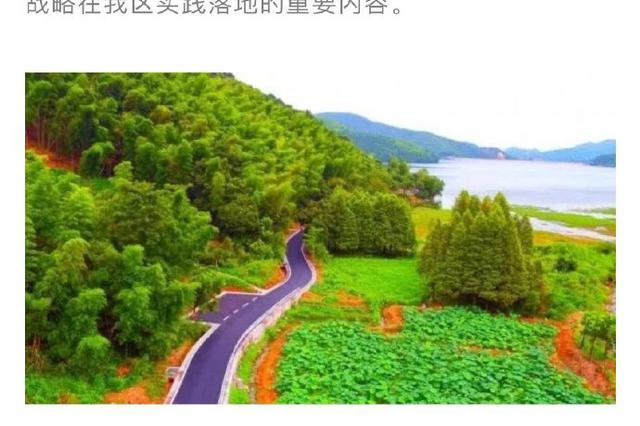 鎮海四好農村路建設全面發力 計劃三年新改建農村路