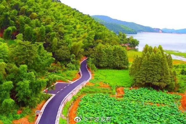 寧波鎮海九龍湖環湖公路驚艷市民 裝點小村美景