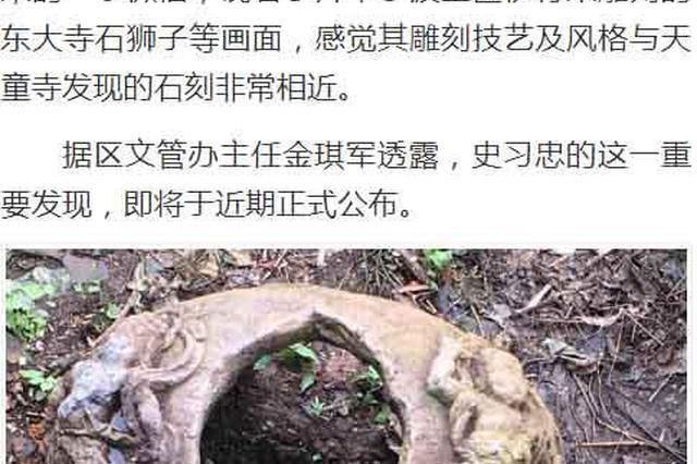 鄞州天童街獭兔养殖场老板 发现一片毁后的古墓地