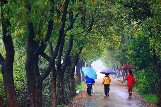 今年宁波梅雨量本世纪以来峰值 未来还将有大暴雨