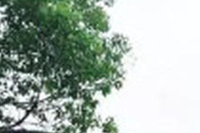 夏季纳凉好去处 宁波4条旅游线路被农业部重点推介