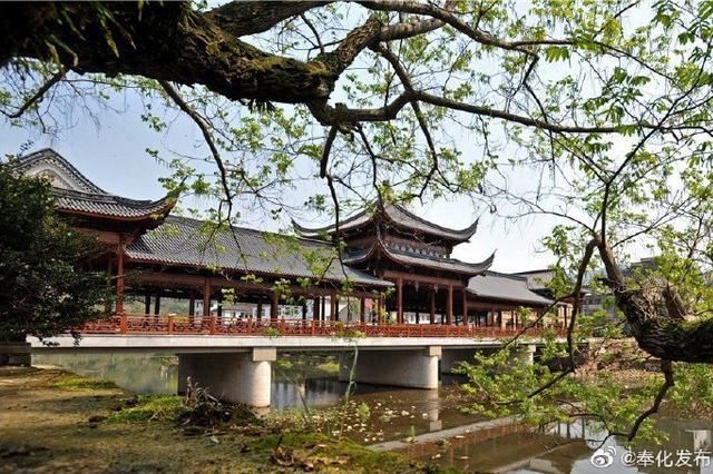 奉化共有16个历史文化名村保护规划已获省市批复