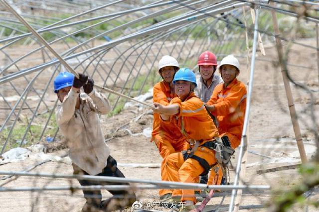 台州路桥电网恢复 宁波支援电力紧张抢修任务完成