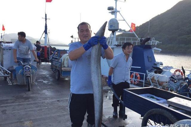 开渔后东海第一网渔货到港 奉化桐照码头热闹异常