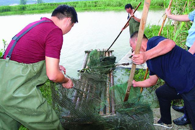 象山全县清理河道地笼网500余顶 让非法网具无处遁形