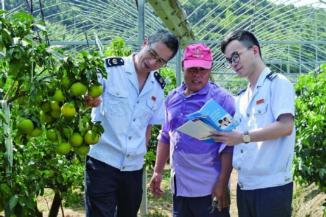象山税务局对橘农展开税收解惑 帮助规范财务核算