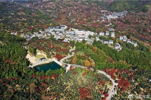 奉化唐诗之路迎来最美季节 进入深秋沿线秀丽风景