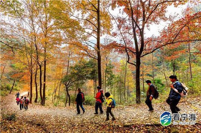 宁海国家登山健身步道获2019年度推荐登山健身步道