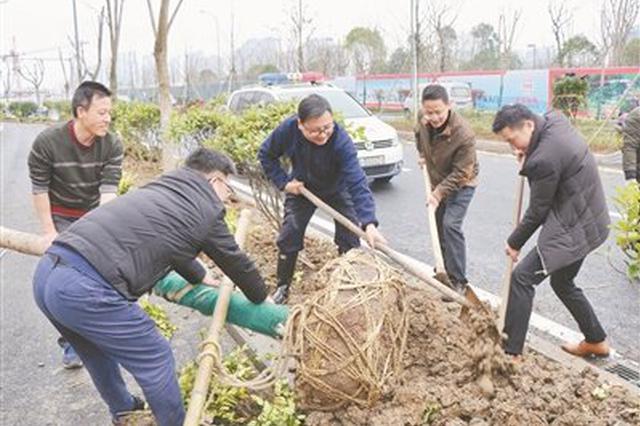 海曙开展义务植树活动 为街道旁土地增添新绿