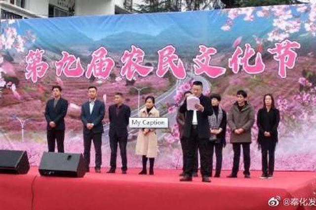 奉化林家村第九届农民文化节 文化建设助推乡村振兴