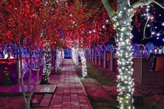 象山海之湾花灯会开启 一场惊艳绝伦的灯光璀璨之夜