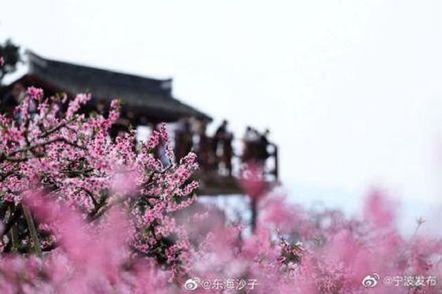 宁波奉化溪口天下第一桃园桃花盛开粉红映天下