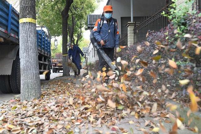 奉化环卫工人日扫落叶50余吨 维护城市干净整洁