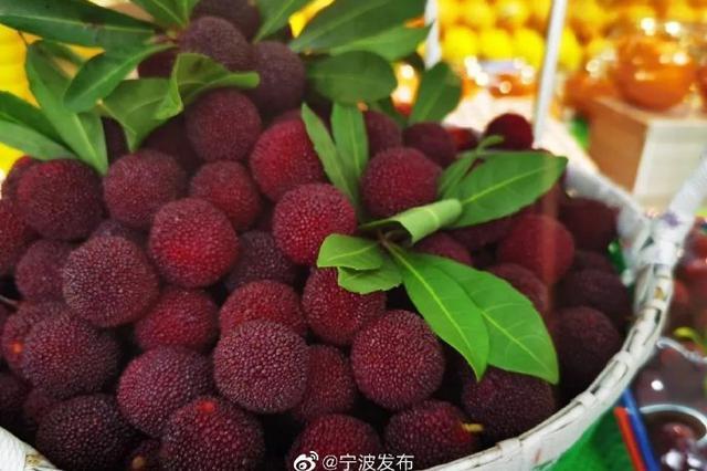 宁波市场上本地杨梅也已零星露面 但大量上市要等6月