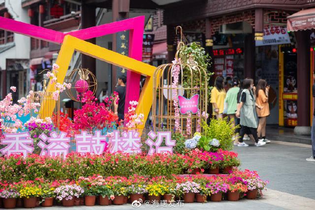 海曙鼓楼沿打造花漾街区 各色花卉种类达30多种