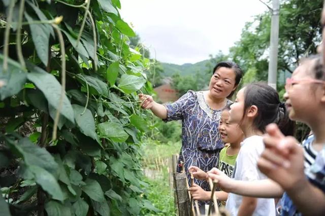 浙江公布第四届最美教师公示名单 宁波3名教师在列