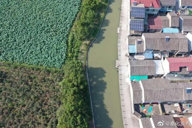 奉化打造水陆空全天候治水管理链 破解老大难问题