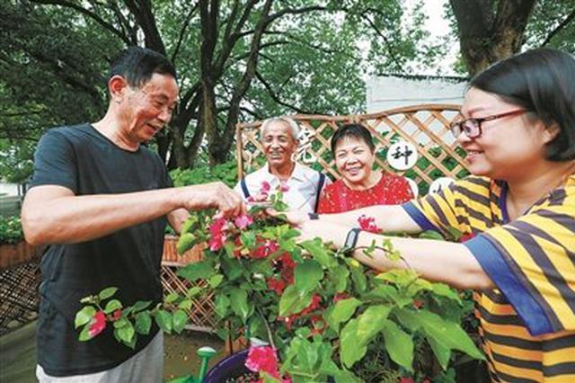 海曙横街镇村里小花园成景点 进一步提升村庄品质