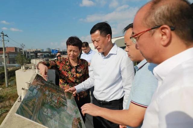 北仑区委书记调研246产业示范园建设 并召开座谈会