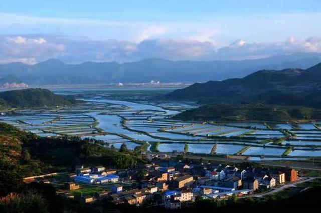 宁海推出青蟹气象指数保险 创新设计为全市首个