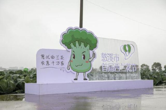 慈溪市首届西兰花节开幕 慈优西兰花农惠千万家