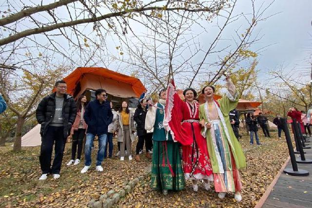 海曙举办银杏音乐节 吸引了不少市民前来观看游玩