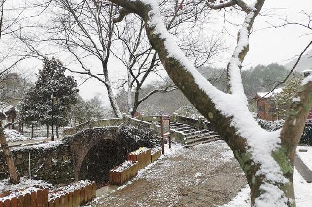 奉化喜迎第一场冬雪 目光所及之处都是白茫茫一片