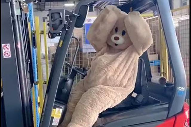 北仑物流企业出现熊状表情包 逗乐职工提升企业氛围
