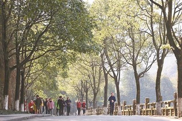 镇海九龙湖冬景如画 元旦假期共接待游客5.5万多人次