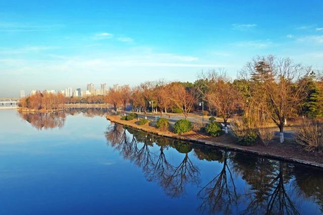 慈溪冬日有一道美丽的风景 森林公园吸引游客游玩