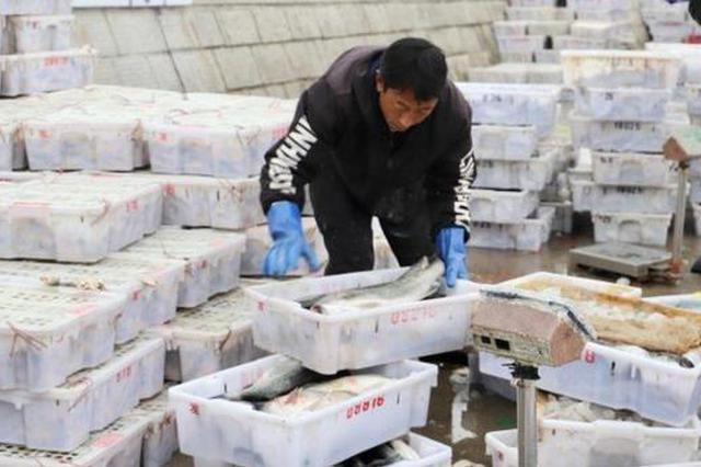奉化春节后第一网海鲜到港 市民马上可以品尝到海鲜