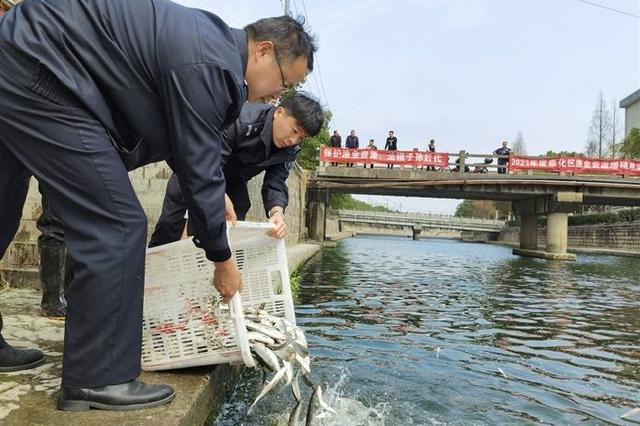 奉化1800公斤淡水鱼苗增殖放流 保持内河渔业多样性