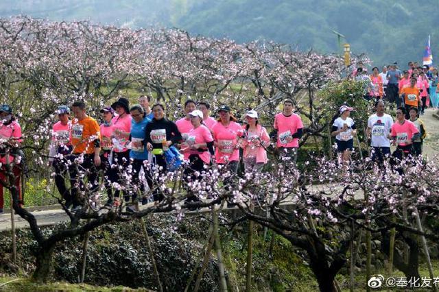 奉化海峡两岸桃花马拉松赛即将开跑 3月5日开启报名