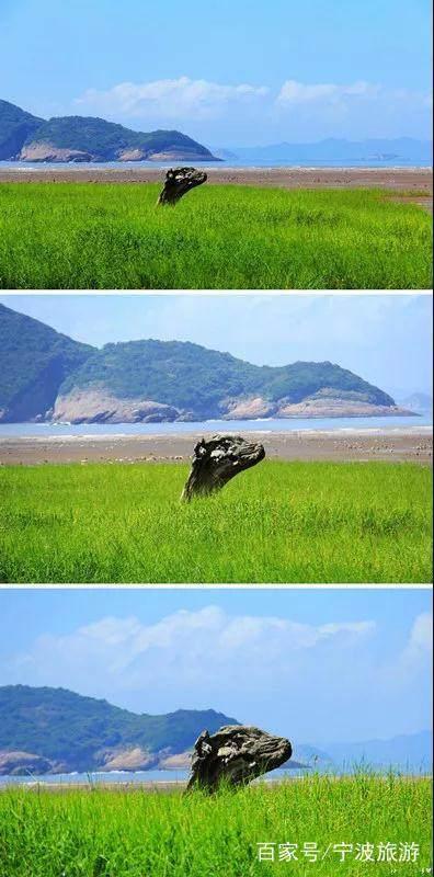 """花岙岛,被誉为""""海上仙子国、人间瀛洲城""""。"""