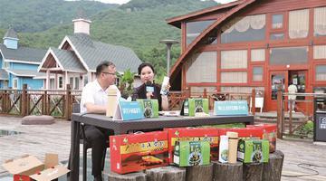 象山茅洋乡村旅游季线上活动火热开启