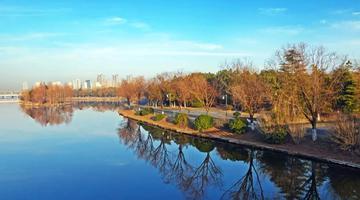 慈溪冬日有一道美丽的风景