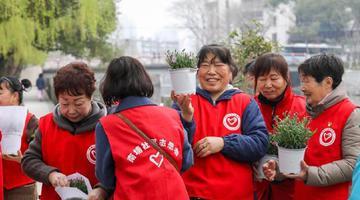 海曙志愿者参加社区植树活动