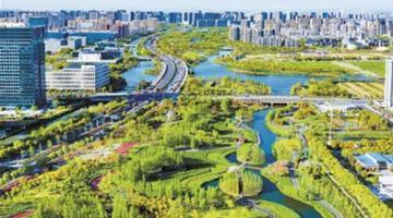 宁波将新增绿地300公顷