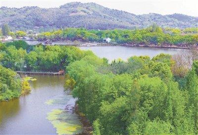 江北区慈城古镇慈湖景区山清水秀 吸引游客前来踏青