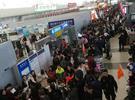 宁波人春节出境游都去哪儿了